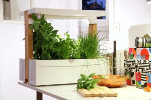 Fresh Square: Le jardin d'intérieur connecté